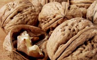 Zdravilne lastnosti orehov