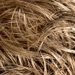 Lasni pogon. Za rast las je potrebna energija, toda leta in hormoni lahko upočasnijo vaše mitohondrije – če jim to dopustite.