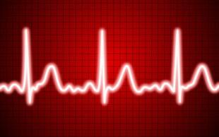 Srčni utrip med vadbo