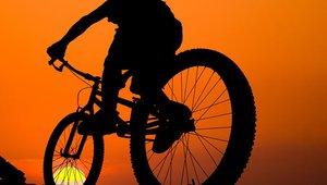 Vas je zamikalo, da bi skrite poti v bližnjem gozdu doživeli še nekoliko drugače, s perspektive kolesarja?