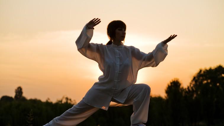Metabolizem, Ohmov zakon in borilne veščine
