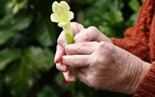 Revmatitis: Odločilno je zgodnje zdravljenje!