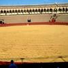 Sevillska arena za bikoborbe