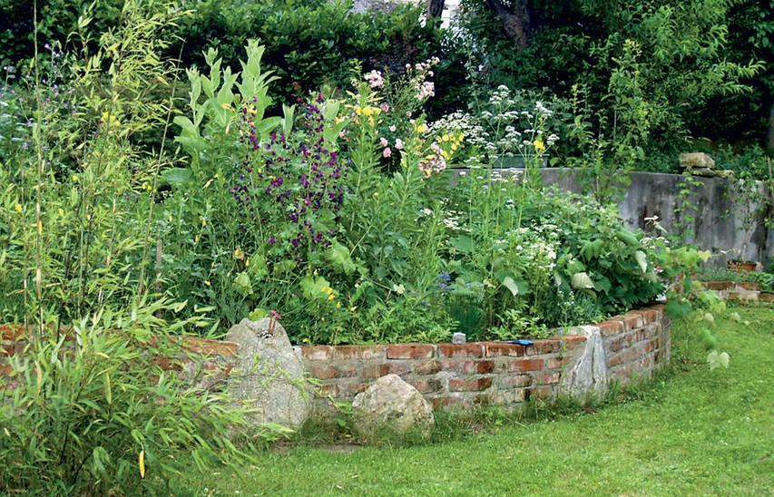 Patricija Šenekar - zeliščni vrt