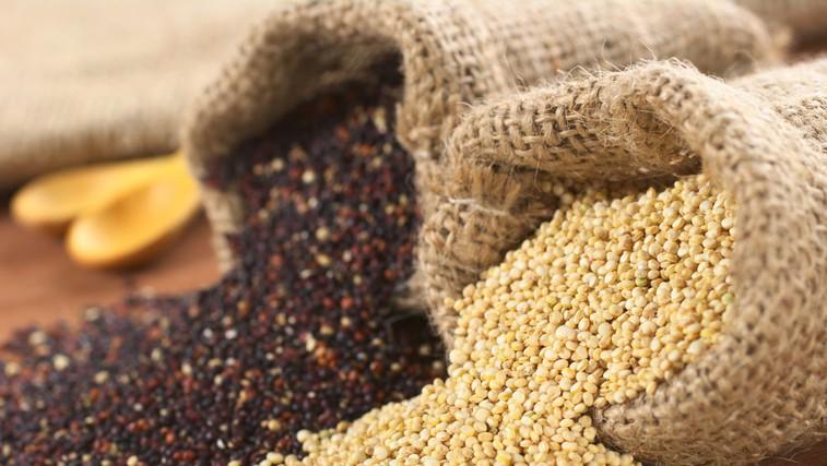 Kvinoja (foto: Shutterstock.com)