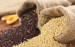 Kvinoja - odličen vir beljakovin