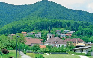 Enodnevni izlet: Borovnica