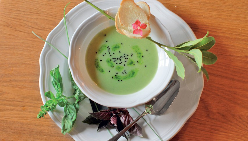 Kremna juha s svežimi zelišči
