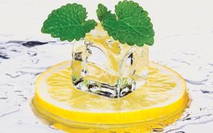 Dieta z limono - zmanjšuje absorbcijo maščob