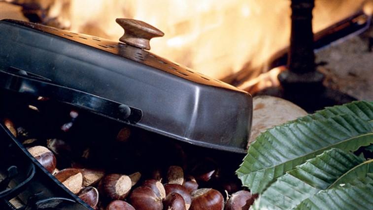 Kostanjev piknik (foto: Shutterstock.com)