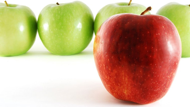 Presno ali moč predsodkov (foto: Shutterstock.com)