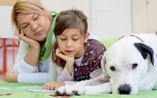 Aktivnosti in terapije s pomočjo psov