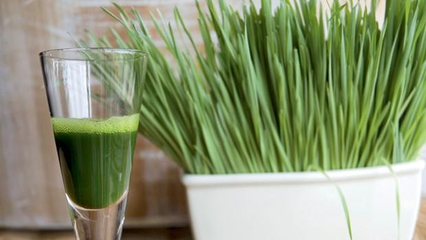 Izjemne lastnosti soka pšenične trave (foto: Shutterstock.com)