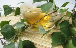 Brezov čaj - čisti in pomaga pri odpravljanju celulita