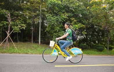 Okrepite hrbet in sklepe s kolesarjenjem