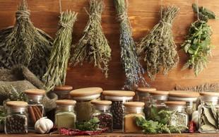 10 zeli, ki varujejo zdravje