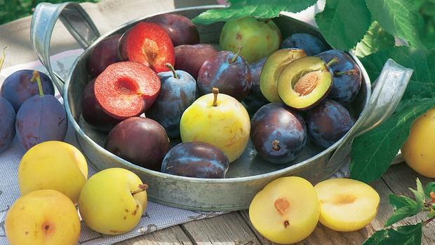 Recepti: Vsestransko koščičasto sadje (foto: Shutterstock.com)