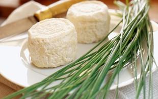 Zdravilne lastnosti kozjega sira