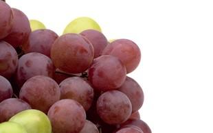 Lepota iz grozdja - 1. del