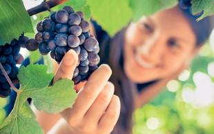 Očiščevalna dieta z grozdjem