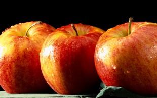 Jabolčna dieta