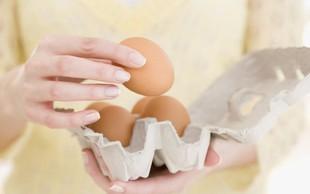 Vloga in pomen beljakovin v prehrani