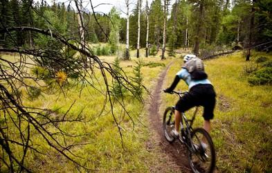 2.000 eurov kazni za vožnjo s kolesom v naravi?