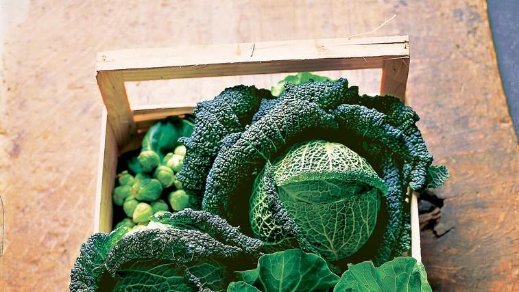 Trije recepti za vitaminsko bombo z zeljem (foto: iz revije Lisa)