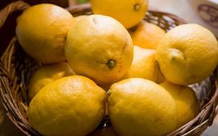 Kaj vse zmore limona?