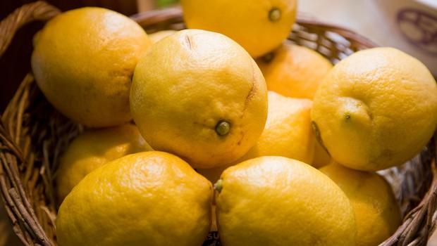 Kaj vse zmore limona?  (foto: Profimedia)