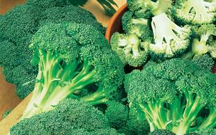 Brokoli – zeleno bogastvo vitaminov in mineralov na naših mizah