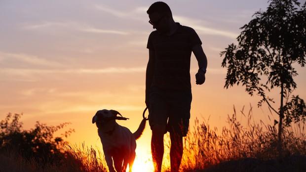 Zakaj je hoja koristna? (foto: Shutterstock.com)