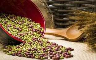 Prehranska vlaknina - vrste, vpliv na zdravje in pripročila