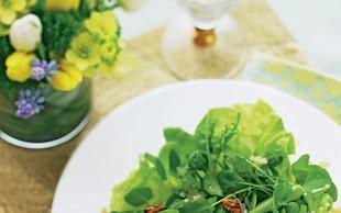 Zeleni solatni krožnik