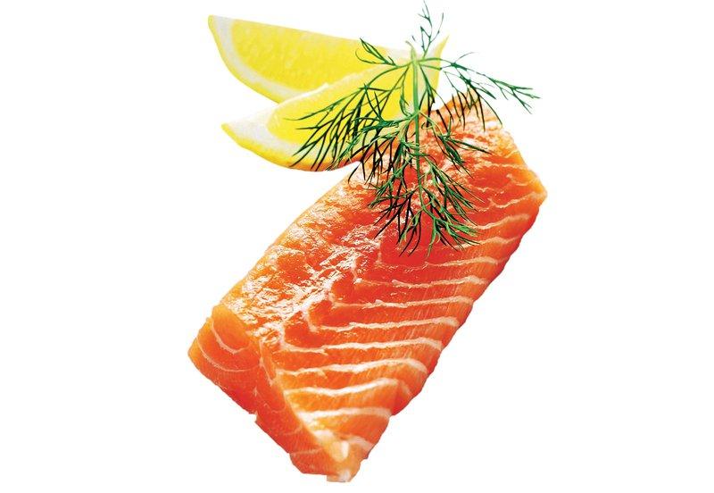 ribe, losos