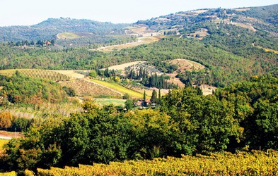 Italija za uživače: Toskanski griči Chianti