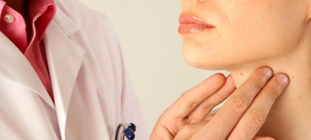 Rezultat iskanja slik za ščitnica