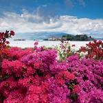 Otok Isola Bella upravičeno nosi  svoje ime. (foto: fotolia)