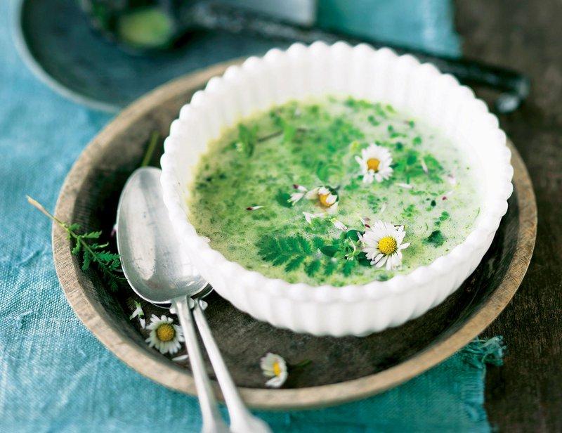 juha iz divjih zelišč