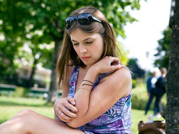Borovci na naše počutje vplivajo bolj, kot si mislimo - Foto: Profimedia