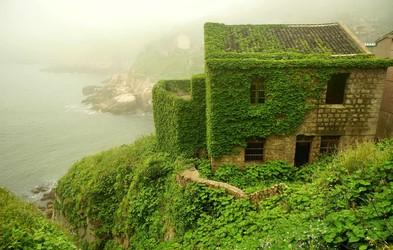 Foto: To lahko ustvari narava