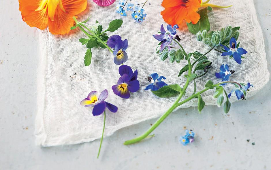 Užitni cvetovi so dekorativni, zdravi in slastni. Kako jih uporabiti? (foto: stockfood photo, jahresve)