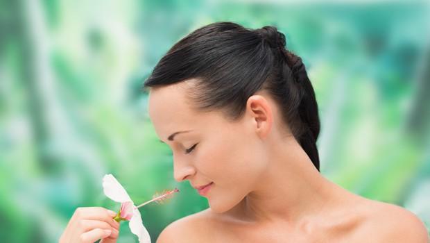 Zelišča, ki blagodejno vplivajo na kožo (foto: profimedia)