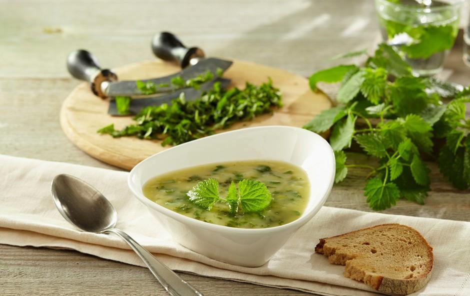 Recepti s koprivami: 4 slastne jedi, ki jih je vredno preizkusiti (foto: Profimedia)