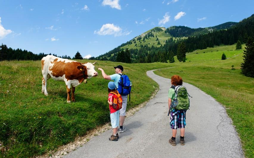 Gremo v hribe: Ideje za prijetne izlete z otroki