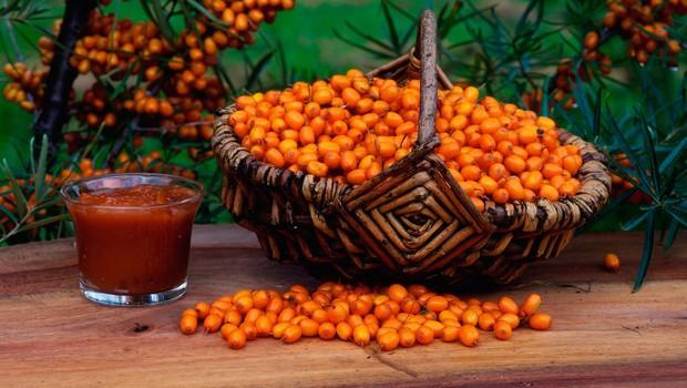 Recepti iz zdravilnega rakitovca (foto: Profimedia)