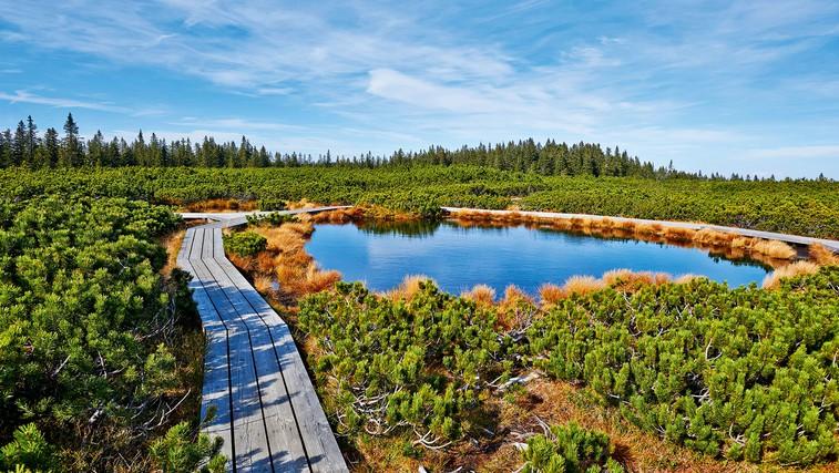 Na izlet: Lovrenška jezera (foto: Shutterstock.com)