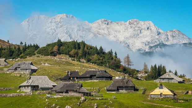 Krompirjeve počitnice na Veliki planini (foto: Profimedia)