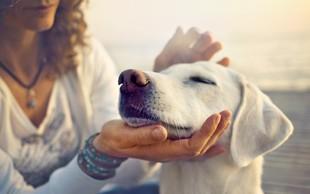 6 drobnih trikov, kako izboljšati razpoloženje in imeti več veselja do življenja