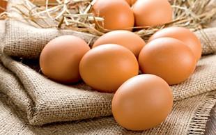 Kako pravilno ravnati z jajci, da ne bo prišlo do zastrupitev